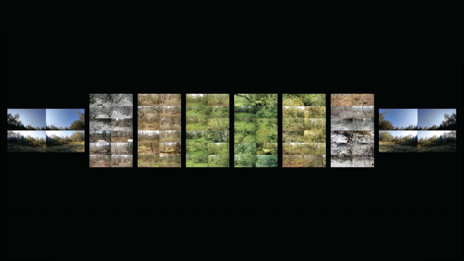 Oeuvre de Steve Heimbecker, Saisons de la forêt au wall de roches, 2020